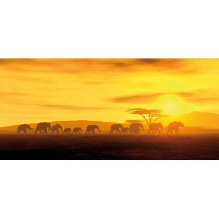 Принт прямоугольный, серия Африка, 013• Керамические обогреватели AFRICA (Африка)