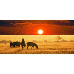 Принт прямоугольный, серия Африка, 025