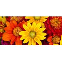 Принт прямоугольный, серия Цветы, 003