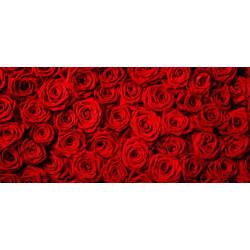 Принт прямоугольный, серия Цветы, 004