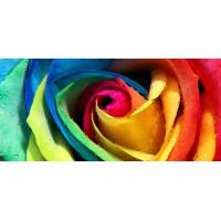 Принт прямоугольный, серия Цветы, 022