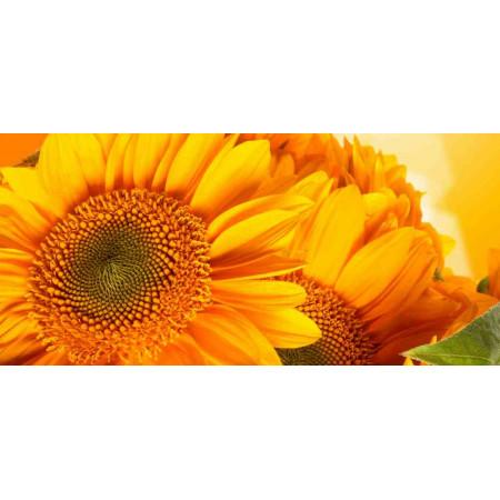 Принт прямоугольный, серия Цветы, 032