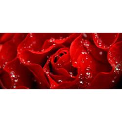 Принт прямоугольный, серия Цветы, 043