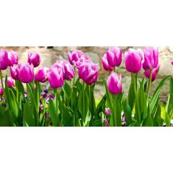 Принт прямоугольный, серия Цветы, 045