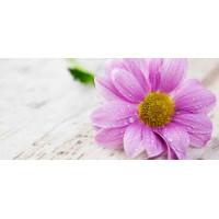 Принт прямоугольный, серия Цветы, 058