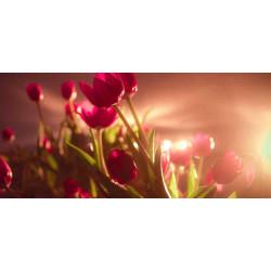 Принт прямоугольный, серия Цветы, 063