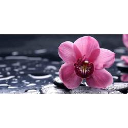 Принт прямоугольный, серия Цветы, 066