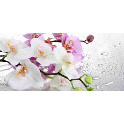 Принт прямоугольный, серия Цветы, 070