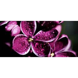 Принт прямоугольный, серия Цветы, 071