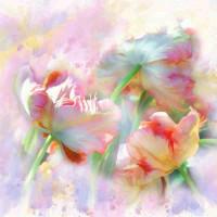 Принт квадратный, серия Цветы, 073