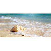 Принт прямоугольный, серия Море, 012