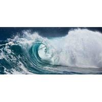 Принт прямоугольный, серия Море, 059
