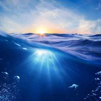 Принт квадратный, серия Море, 061